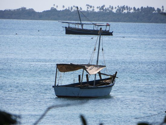 Dhows in front of Wasini Island