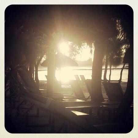 La Palmeraie Hotel : Fin de journée
