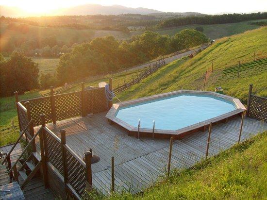 Azienda Agrituristica Il Sarale : Il Sarale - La piscina