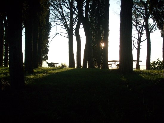 Azienda Agrituristica Il Sarale : Il Sarale - Parco