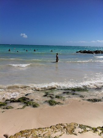 Sanctuary Cap Cana by AlSol: Beautiful beach