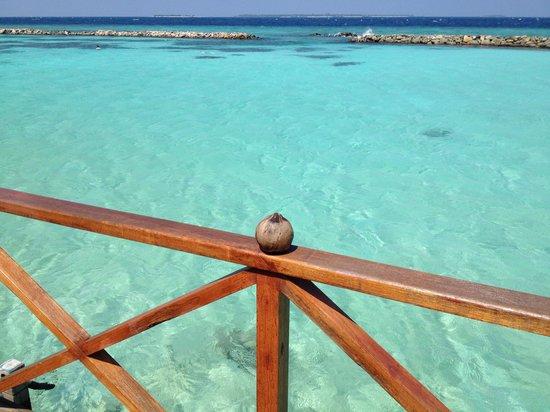 Vivanta by Taj Coral Reef Maldives : お部屋からの風景です。