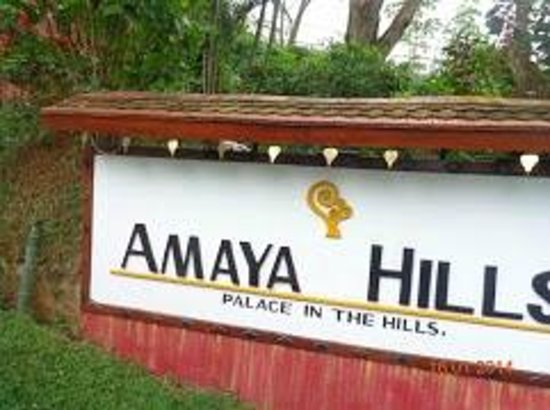 Amaya Hills: The Hotel Board .
