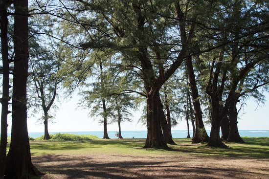 Cachet Resort Dewa Phuket - Nai Yang Beach : Sunny november