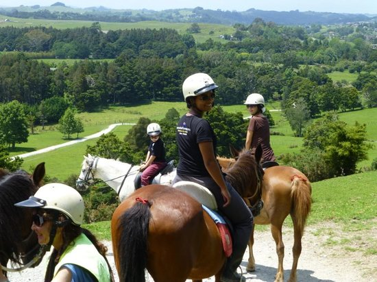 North Shore, New Zealand: enjoying horse riding