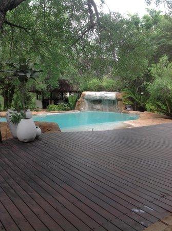 Chapungu Tented Bush Camp: The pool by the main lodge