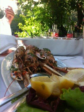 Restaurant Tri Ferala: Adriatic shrimps