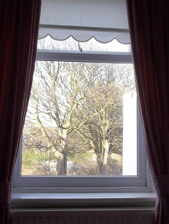 The Abingdon Guest House: View from Room 4 St G