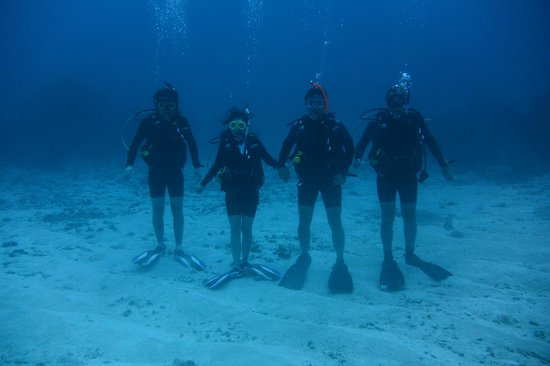 Our Diving Party Picture Of Living The Dream Divers Seven Mile Beach Tri