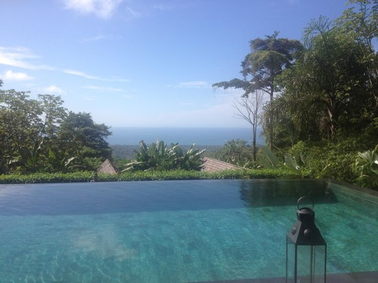 Oxygen Jungle Villas: view from sun bed over pool-forest-Ocean