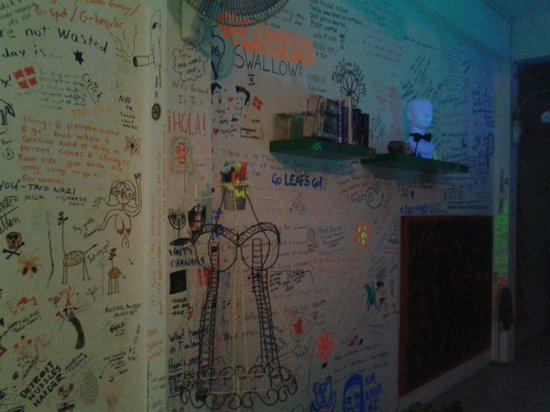 Taco Shack Hostel and Restaurant: Art attacks