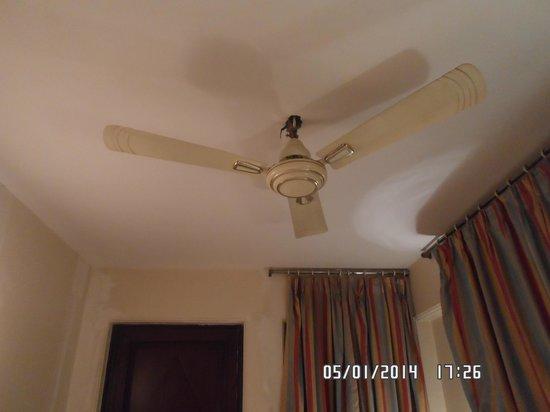 Palace on Ganges: вентилятор