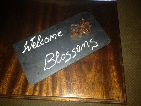 Macdonald New Blossoms Hotel: Welcome