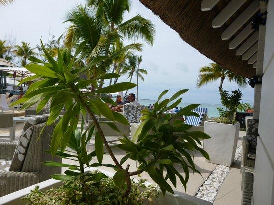 Ambre Resort & Spa : coral