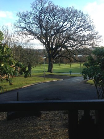 Cameron House Lodges: View from lodge 32