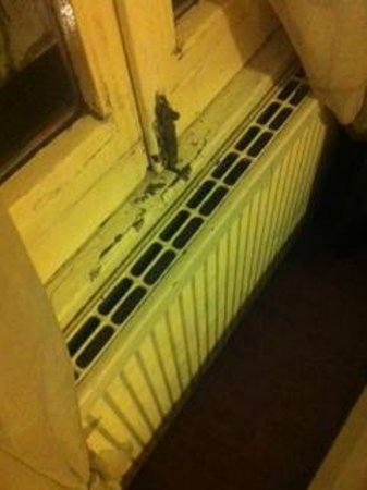 Thorbecke Hotel: Horrible moulding radiator and single glazed, cold noisy window