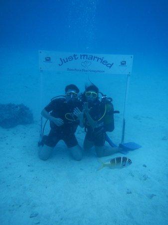 Top Dive, Bora Bora: Just Married