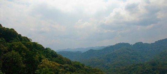 Nshongi Gorilla Resort : Getting around