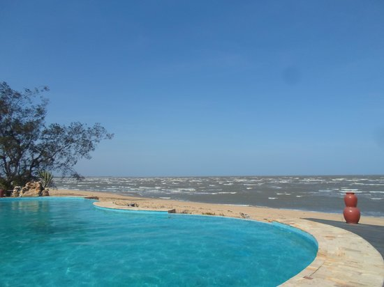 Saadani Safari Lodge : pool