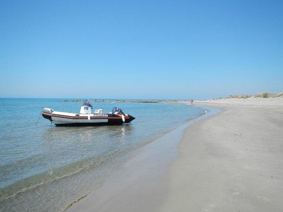 Espiguette Beach: si beau et si près !
