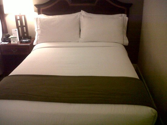 Holiday Inn Rolling Meadows - Schaumburg Area: Very comfortable bed
