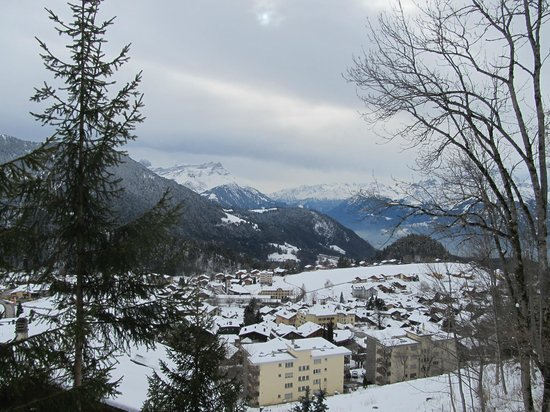 Hotel Le Grand Chalet: view from the balcony