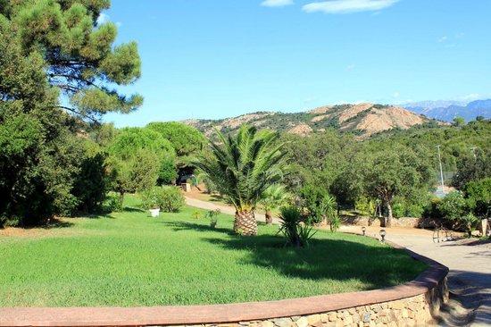 U Pirellu Residence : Parc arboré qui entoure l'ensemble des villas