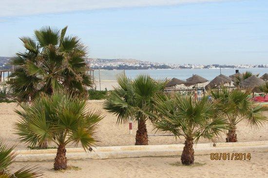 Hotel Paradis Palace : Пляж.