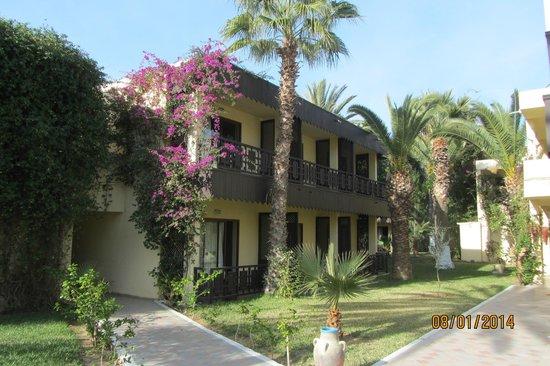 Hotel Paradis Palace : Территория отеля.