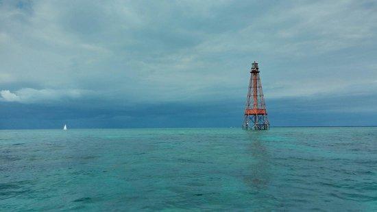 Sombrero Reef: January 2014