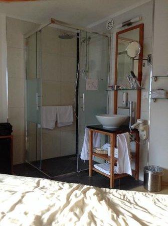 Sunstar Style Hotel Zermatt : camera con bagno a vista!!