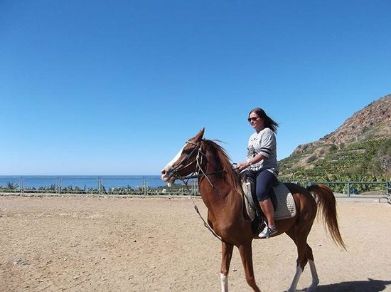 Horse Riding by Tours in Alanya