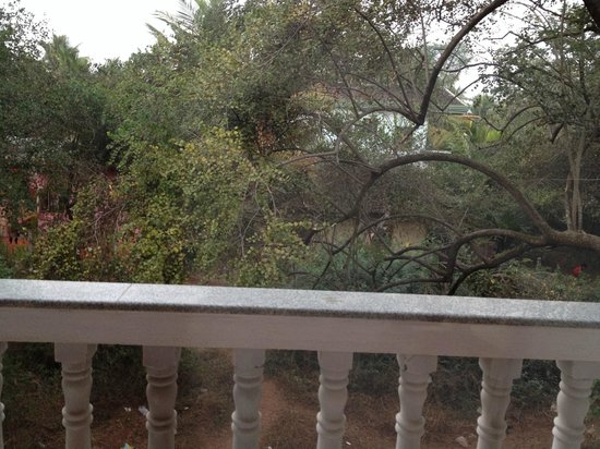 D'souza's Holiday Homes: View from room!