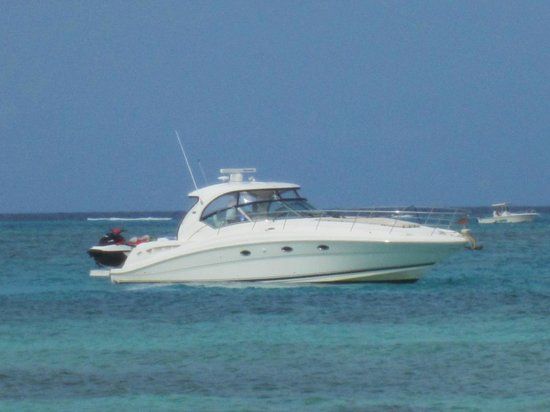 Cayman Luxury Charters Ltd.: They keep it perfect