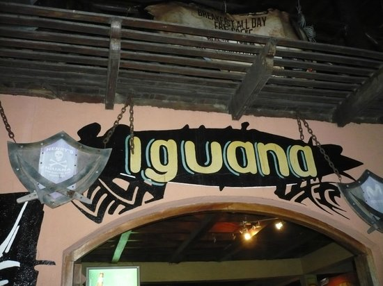 Henry's Iguana Beach Bar & Restaurant: Good place for a drink