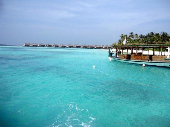 Vakarufalhi Island Resort : Doni