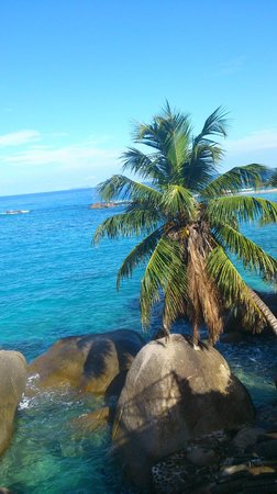Bliss Hotel Seychelles : View from lounge