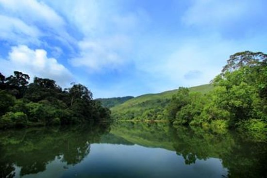 A lake in the Gavi forest