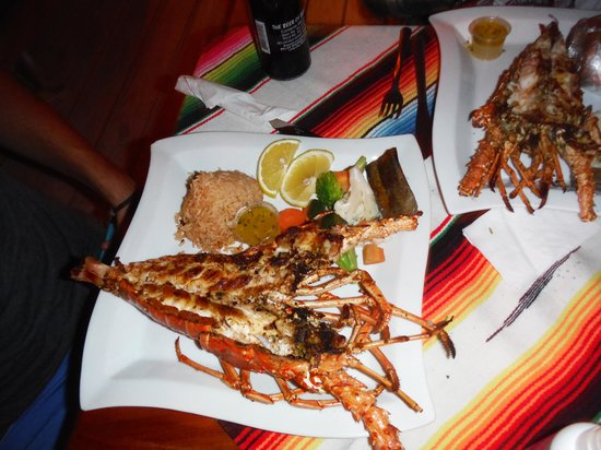 Rose's Grill & Bar: lobster