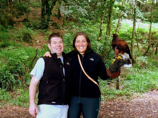 Killarney Falconry : Falconry on our Honeymoon