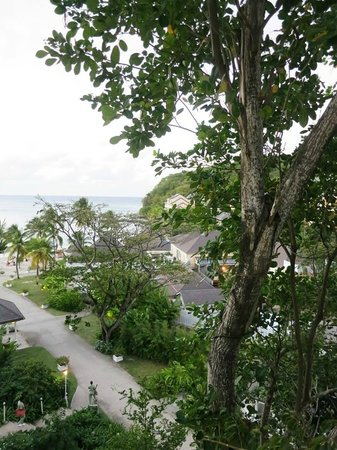 BodyHoliday Saint Lucia : View from Zen Deck