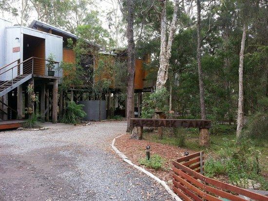 Paperbark Camp: Reception/restaurant