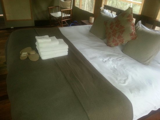 Paperbark Camp: Bed in standard room (two beds pushed together to make king)