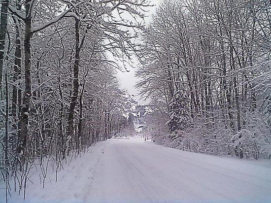 Addi's Essen und Trinken: Das ist nicht Winterberg in diesem Jahr