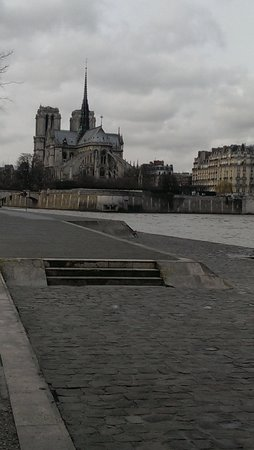 Blue Fox Travel: Notre Dame from banks of Seine
