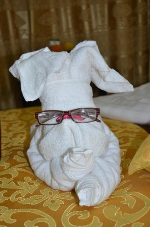 Cedar Hotel: An animal wearing glasses !