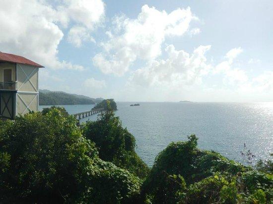 Grand Bahia Principe Cayacoa : What a view.....