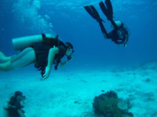 Cozumel Sports: Discover Scuba