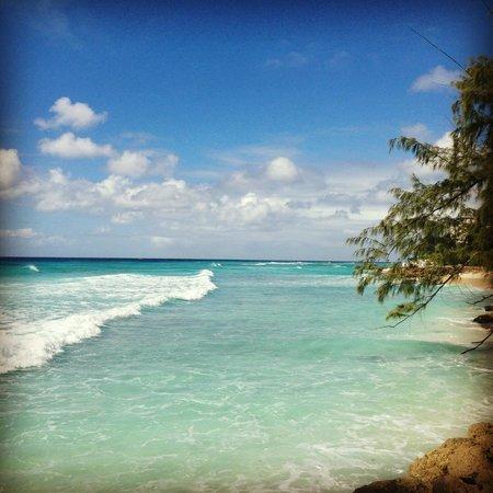 Sunbay Hotel : Havet vid Barbados beach club