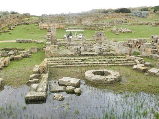 Selinunte : tempio di era